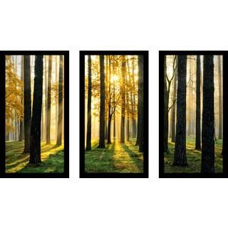 """Many Paths"" Framed Plexiglass Wall Art Set of 3"