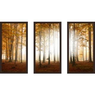 """Fall"" Framed Plexiglass Wall Art Set of 3"