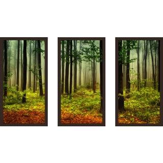 """The Right Path"" Framed Plexiglass Wall Art Set of 3"