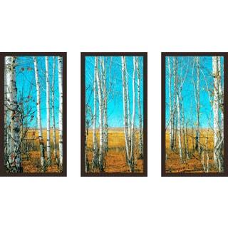 """""""Blue Skies"""" Framed Plexiglass Wall Art Set of 3"""