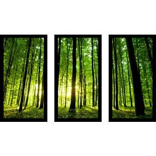 """Enlighten Me"" Framed Plexiglass Wall Art Set of 3"