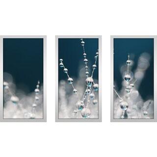 """Sharon Johnstone """"Snow White & Ice Blue"""" Framed Plexiglass Wall Art Set of 3"""