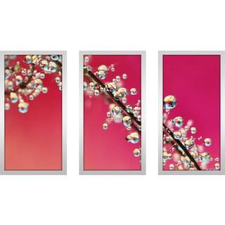 "Sharon Johnstone ""Smoking Pink Drops Ii"" Framed Plexiglass Wall Art Set of 3"