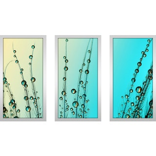 """Sharon Johnstone """"Feather Drops With Blue"""" Framed Plexiglass Wall Art Set of 3"""