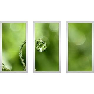 "Sharon Johnstone ""Early Morning Dew"" Framed Plexiglass Wall Art Set of 3"
