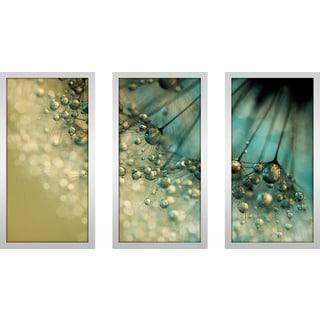 "Sharon Johnstone ""Delicious Dandy Drops"" Framed Plexiglass Wall Art Set of 3"