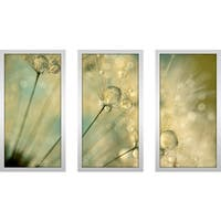 "Sharon Johnstone ""Dandy Drops & Sparkles"" Framed Plexiglass Wall Art Set of 3"