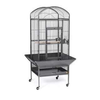 Prevue Pet Products Medium Dometop Bird Cage