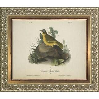 Vintage Collection 'Ground Warbler' Framed High Quality Print on Canvas