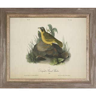 Vintage Collection 'Ground Warbler' Framed High Quality Print on Canvas