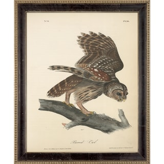 Vintage Collection 'Barred Owl' Framed High Quality Print on Canvas