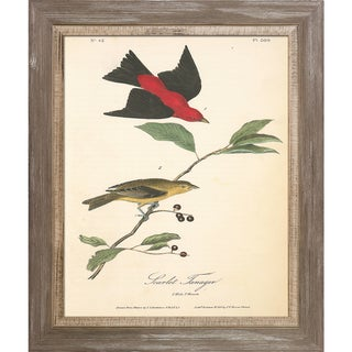 Vintage Collection 'Scarlet Tanager' Framed High Quality Print on Canvas