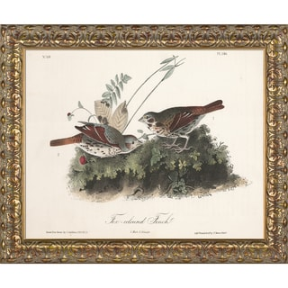 Vintage Collection 'Fox-coloured Finch' Framed High Quality Print on Canvas