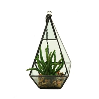 D&W Silks Worm Plant in Geometric Glass Pyramid