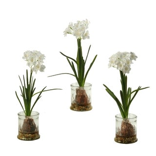 D&W Silks Set of 3 Paper Whites in Glass Candle Holder