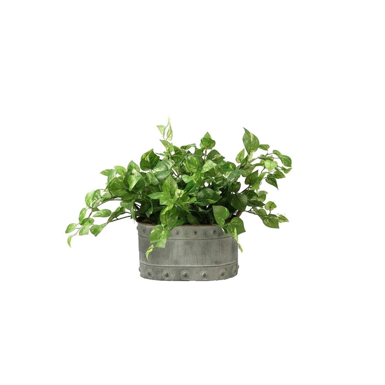 D&W Silks Pothos Ivy in Oval Metal Planter (Green, Grey),...