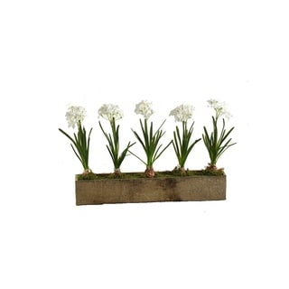 D&W Silks Paper Whites in Rectangle Wooden Planter