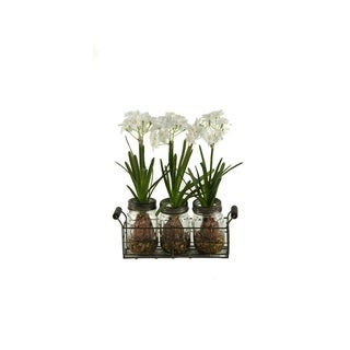 D&W Silks Paper Whites in Glass Jars in Metal Holder