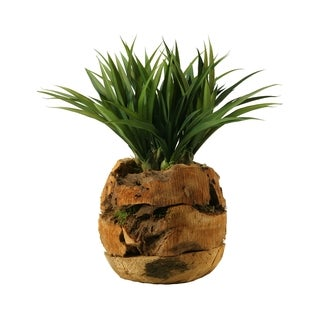 D&W Silks Lily Grass in Wooden Root Ball Planter