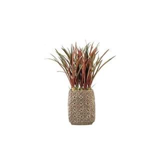 D&W Silks Burgundy/Green Areca Grass in Tall Oval Ceramic Planter