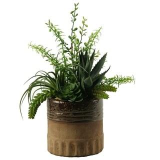 D&W Silks Aloe, Tillandsia and Echeveria in Round Ceramic Planter