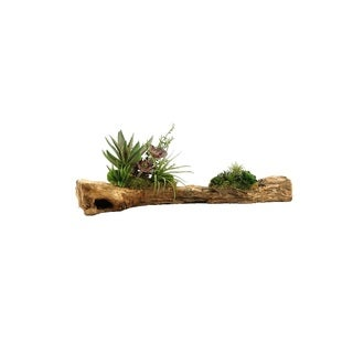D&W Silks Aloe Plant with Assorted Succulents On Wooden Log