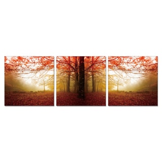 Furinno SeniA 'Autumn Leaves' Wall Mounted Triptych Photography Prints (Set of 3)
