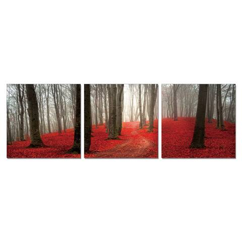 Furinno SeniA 'Dawn Forest' 3-panel Wall-mounted Triptych Photography Prints