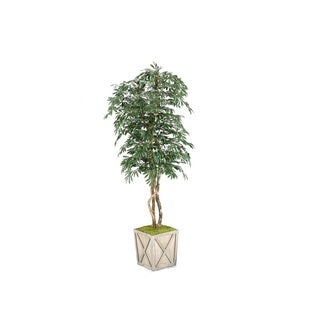 D&W Silks 7-foot Frosted Olive Tree in Weathered Wooden Box Planter