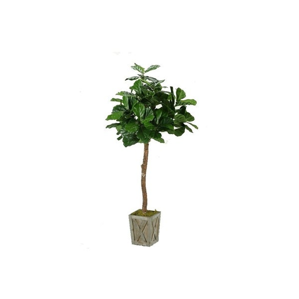 D&W Silks 6-foot Fiddle Leaf Fig Tree in Weathered Wood Box Planter