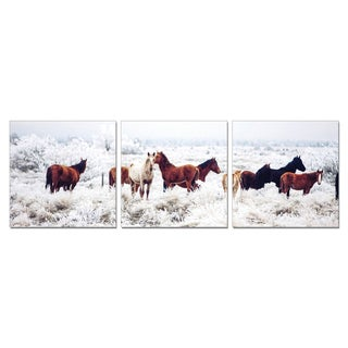 Furinno SeniA 'Horses on Plains' 3-panel Wall-mounted Triptych Photography Print Set