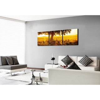 Furinno Senic 'Africa Sunrise' 60-inch x 20-inch 3-panel Canvas Art Print With Wood Frame