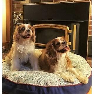 Snoozer Nessa Indoor/Outdoor Round Pet Bed