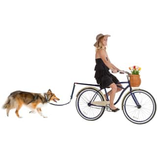 OxGord Pet Bicycle Bike Pet Leash|https://ak1.ostkcdn.com/images/products/12874275/P19635079.jpg?impolicy=medium