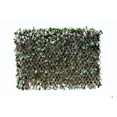 Greensmart Dekor Expandable Faux Lemon Leaf Lattice Screen