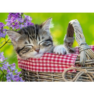 Ravensburger 10539 100 Piece Sleeping Kitten Puzzle