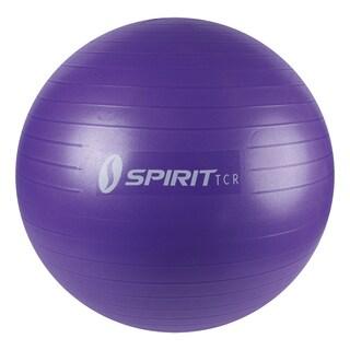 Spirit TCR 002002 65CM Lavender Gymball