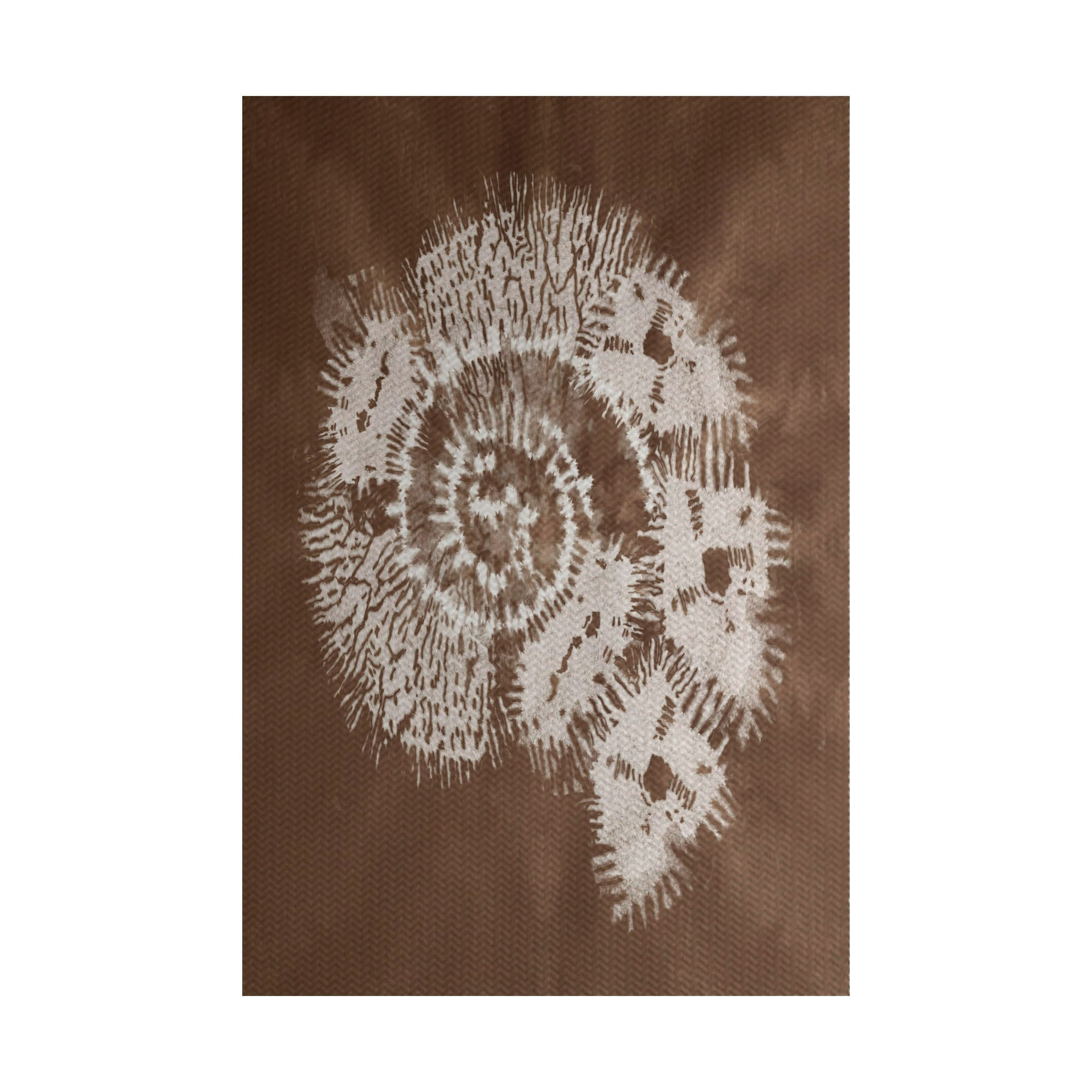 E By Design Conch Animal Print Indoor, Outdoor Rug (2' x ...