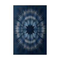 Shibori Burst Geometric Print Indoor, Outdoor Rug (2' x 3')