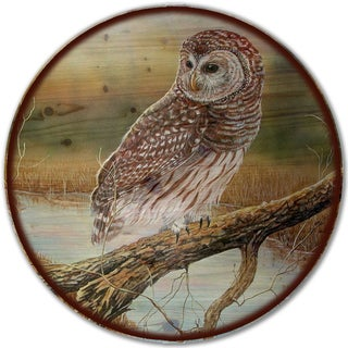 WGI Gallery 'Early Hunter Owl' Wood Lazy Susan
