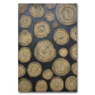 Benjamin Parker 'Wooden' 31 x 47-inch Mixed Media Canvas Wall Art