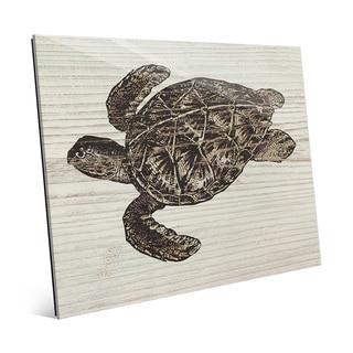 Rustic Sea Turtle Brown' Acrylic Wall Art