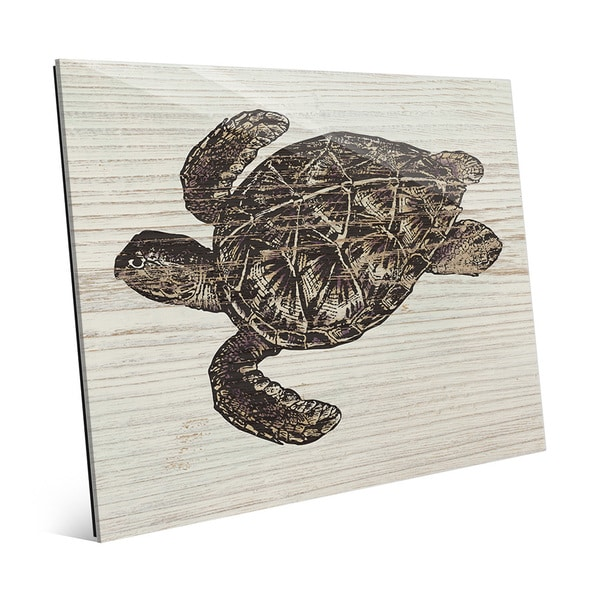 Rustic Sea Turtle Brown' Acrylic Wall Art