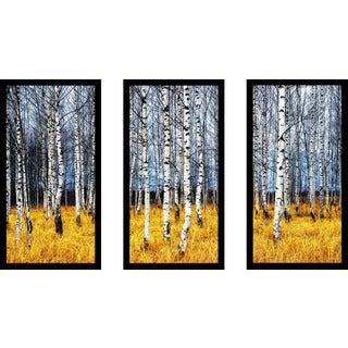 """Birch Trees 2 Birch Trees"" Framed Plexiglass Wall Art Set of 3"