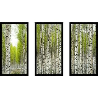 """Birch Trees"" Framed Plexiglass Wall Art Set of 3"
