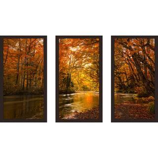 """""""Autumn Forest"""" Framed Plexiglass Wall Art Set of 3"""