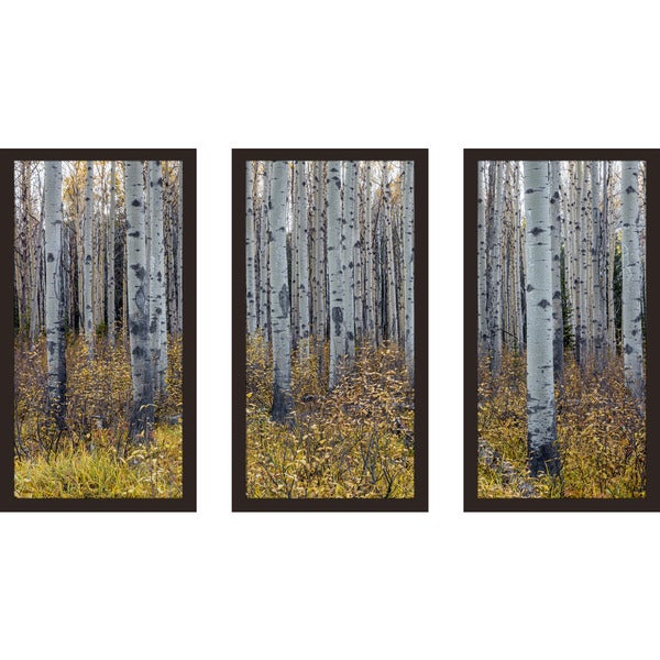 13.5 W x 25.5 H x 1 D Set of 3 Picture Perfect International Birch Trees I Framed Plexiglass Wall Art