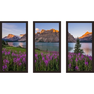 """Top of the Mountain"" Framed Plexiglass Wall Art Set of 3"