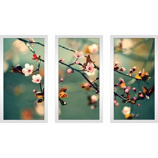 """Floral Photography"" Framed Plexiglass Wall Art Set of 3"