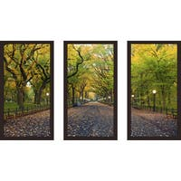 """Through the Trees"" Framed Plexiglass Wall Art Set of 3"